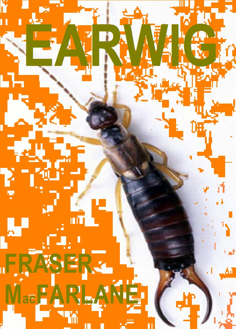 Earwig, a one-act play by Fraser MacFarlane